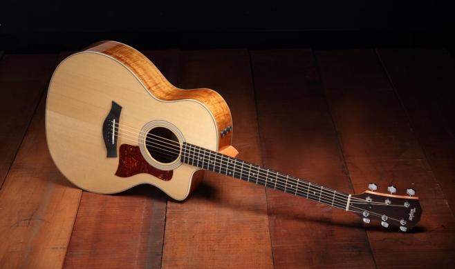 Taylor-200-Koa