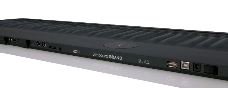 Seaboard GRAND LFE - Backpanel