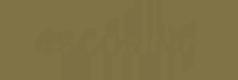4scoring_logo