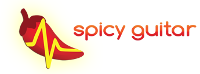 spicy_logo
